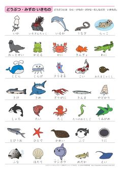 Basic Japanese Vocabulary through pictures - Japanese Quizzes Japanese Verbs, Japanese Phrases, Japanese Kanji, Japanese Travel, Study Japanese, Cute Japanese, Learning Japanese, Learning Italian, Hiragana