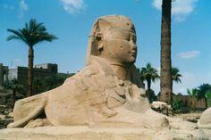 Luxor #egypt #travel