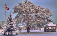 Snowy Scene in Stewiacke. Stewiacke, Nova Scotia. ©Marg Robins www.stewiackenovascotia.com