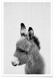 Print 64 - Lila x Lola - Affiche premium