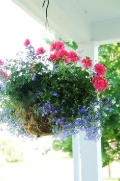 hanging basket...like the combination of colors