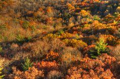 Autumn  Later Afternoon Hills  Fine Art HDR by JoshFriedmanPhoto, $42.50