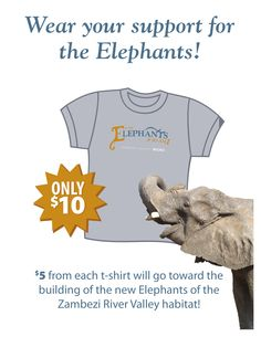 $5 of every T-shirt sale goes to the fundraising campaign for the new Elephants of the Zambezi River Valley. Call 316-266-8217 to purchase a shirt.