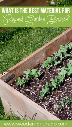There are a lot of options to choose from when creating your raised garden boxes. This is the best material for raised garden boxes that will last a long time and provide
