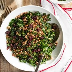 Shredded Kale Salad with Pecan, Parmesan, and Cranberries