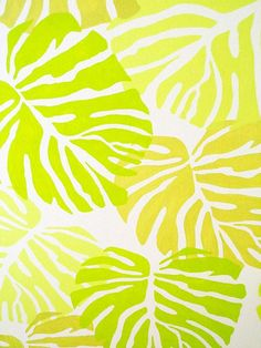 Meadowlark and Lime.