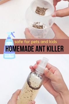 Homemade Ant Killer: Make this all-natural DIY ant spray to kill ants in the house without harming pets or children. House Cleaning Tips, Cleaning Hacks, Homemade Ant Killer, Ant Spray, Home Safes, Pet Safe, Diy Stuffed Animals, Pest Control, Ants
