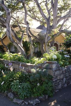 Carmel, California. Storybook Cottages Throughout The Town.