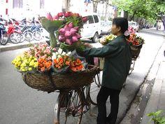 ベトナム、ハノイ(2005年)  蓮の花の季節。 次雨天者で売り歩く花売り娘達。