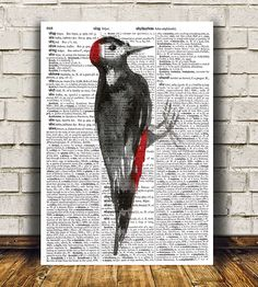 Adorable Woodpecker print. Gorgeous Animal poster for your home and office. Amazing Bird decor. Pretty contemporary Dictionary print.    SIZES: A4