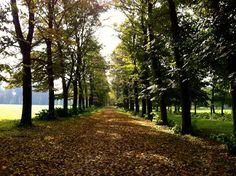 6 Ways to Enjoy Autumn in Italy