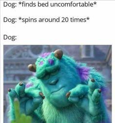 Today's Morning Mega Memes Funny Disney Memes, Stupid Funny Memes, Funny Relatable Memes, Haha Funny, Funny Cute, Funny Posts, Top Funny, Funny Humor, Funny Stuff