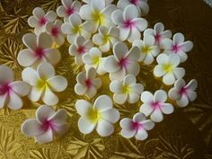 Edible Frangipani Cupcake Toppers for sale on Trade Me, New Zealand's auction and classifieds website Luau Cakes, Small Flowers, Flower Making, Cupcake Toppers, Fondant, Icing, Birthday, Plants, Food