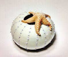 Starfish Sea Urchin Sculpture Sea Star Vase Sea Life Beach Cottage Decor Coral Reef Ocean Sealife Porcelain Ceramic Art