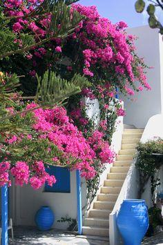 Pretty Santorini