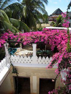 Kisimani House, Lamu  www.lamuislandproperty.com