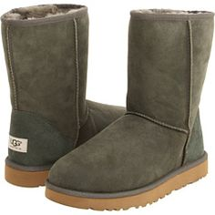 ugg forest night