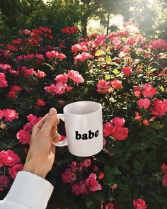"3,788 Likes, 16 Comments - Viktoria Dahlberg (@viktoria.dahlberg) on Instagram: ""Cheers to the weekend #weekend #flowers #coffee #uohome #nyc"""