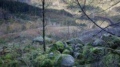 The Isdalen mystery - Dokumentar