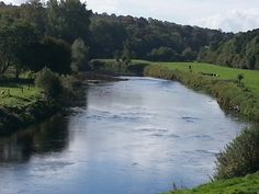 On the drive to Inistioge over the river Nore