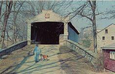 1970's postcard. Hagins collection.