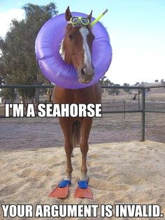 I am a seahorse, your argument is invalid.