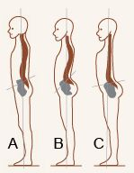 Anterior Pelvic Tilt may be the cause for your stomach pooch. This article has stretches to help.