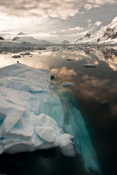 visitheworld:    Icebergs on Paradise Bay, Antarctic Peninsula (by Wim Hoek).