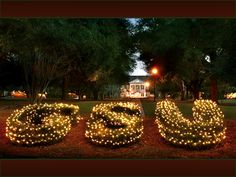 Georgia Southern University <3 Sweetheart Circle at Christmas will always be my favorite