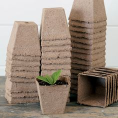 Biodegradable peat pots made from Canadian sphagnum moss. At transplant time, set the whole pot into the soil. The plant roots will grow through the peat, which breaks down over time. Order today at Park Seed. Herb Garden Kit, Garden Soil, Gardening, Aquaponics Kit, Peat Moss, Growing Seeds, Cactus Y Suculentas, Seed Starting, Trees To Plant