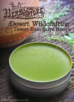 Desert Wildcrafting & Desert Rain Salve Recipe | BulkHerbStore.com/blog | Learn to make a powerful all-purpose herbal salve with wildcrafted...