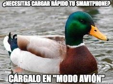 """24 Classic 'Actual Advice Mallard' Memes Full Of Clever Life Hacks - Funny memes that """"GET IT"""" and want you to too. Get the latest funniest memes and keep up what is going on in the meme-o-sphere. Top Memes, Memes Humor, Jokes, Humor Videos, Funny Humor, Funny Images, Funny Pictures, Funny Gifs, Funniest Gifs"""