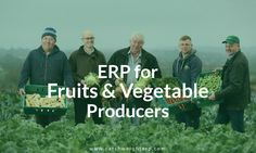 ERP for Fruits & Vegetables Industry Inevitable, Weight Management, Fruits And Vegetables, Conservation, Monitor, Software, Industrial, Activities, Canning