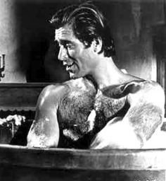 Clint Walker Actor, Cheyenne Bodie, Silver Foxes Men, Hot Cowboys, Star Wars, Man Down, Retro Men, Another Man, Older Men