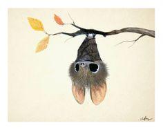 Sydney Hanson - Illustration