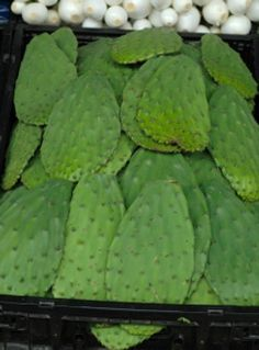 Recipe for: Stuffed prickly pear cactus
