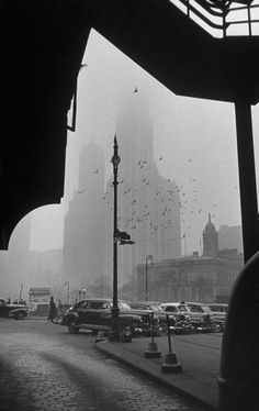 surrounding the city in fog, with woolworth building in background, new york, 1950 photo by walter sanders via Laura Pellegrini Downtown New York, New York City, Old Photos, Vintage Photos, Woolworth Building, Vintage New York, Lower Manhattan, Concrete Jungle, Historical Pictures