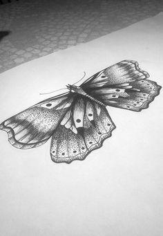Papillon dessin !!