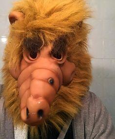 my alf halloween costume story dinosaur dracula - Alf Halloween Episode