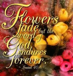 Isaiah The Word of God endures forever. Bible Verse Pictures, Scripture Verses, Bible Quotes, Bible Scriptures, Book Of Isaiah, Bible Text, Sisters In Christ, Reading Quotes, Lord And Savior