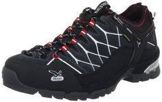 Salewa Men's Alp Trainer GTX Hiking Shoe,Carbon/Silver