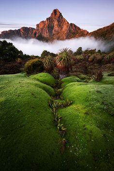 South-West National Park . Tasmania, Australia