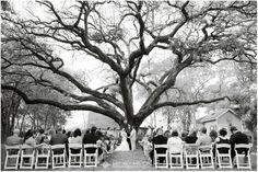 Tara and Jeremy: Wedding » Brittney Melton Photography | Houston Wedding Photography | Oak Tree Manor Wedding Spring, TX