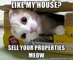 estate agents use video and sell your properties meow.   For more information visit: http://hollogram.com/sectors/estate-agents-videos/property-video-production/
