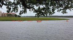 Rush hour in Hilton Head Island - morning kayaking.