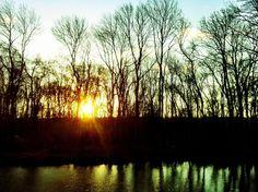 Sunset at Forest Garden Shovelstrode, Sussex