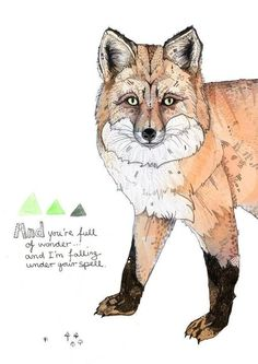 Sandra Diekmann Fox illustration