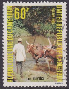 Cameroon - 1981-Cattle at Waterhole -60c - used - bidStart (item 22913988 in Stamps, Africa, Cameroun)