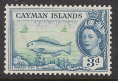 CAYMAN ISLANDS 3d parrot Fish Mint Light Hinged - http://stamps.goshoppins.com/commonwealth-british-colonial-stamps/cayman-islands-3d-parrot-fish-mint-light-hinged/