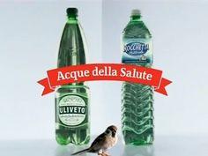 acqua-salute-rocchetta-uliveto.jpg 445×334 pixel
